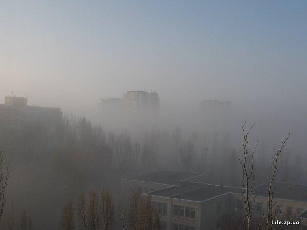 Бабурка в тумане...