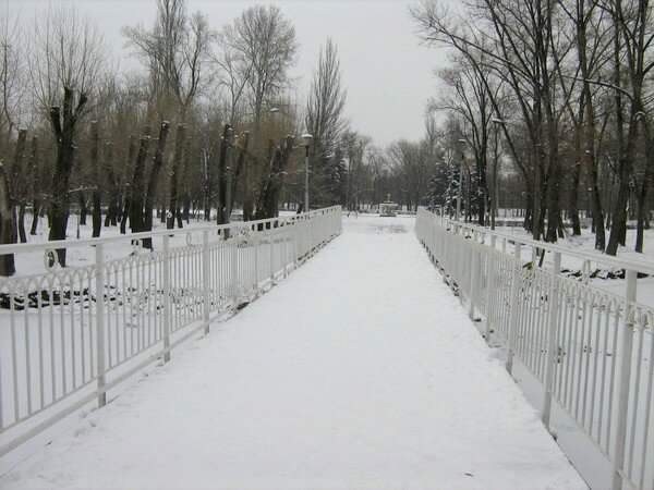 Зимняя Дубовая Роща.