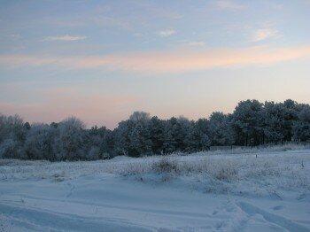 Зимний лес. Правый берег.