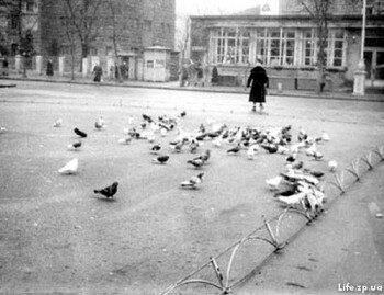 Кормление голубей на одной из площадей.