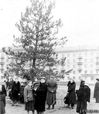 1959 год. Новогодняя елка на площади Маяковского.