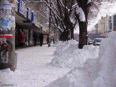 """Ряды """"Верже"""" в снегу"""