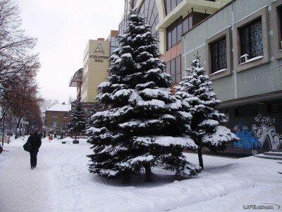 Заснеженные улицы Запорожья