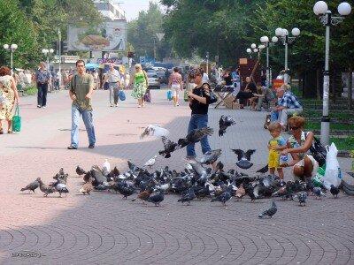 Стометровка к Крытому рынку от проспекта Ленина