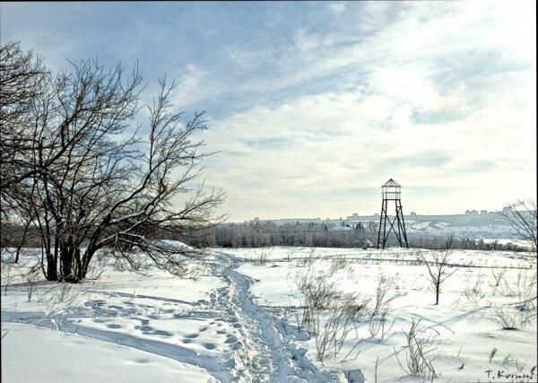 Национальный заповедник «Остров Хортица» зимой