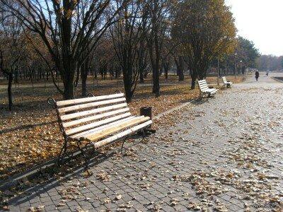Осень в Алюминиевой балке