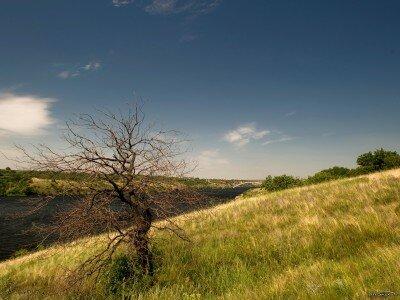 Знойный полдень, берега Хортицы (Лето)