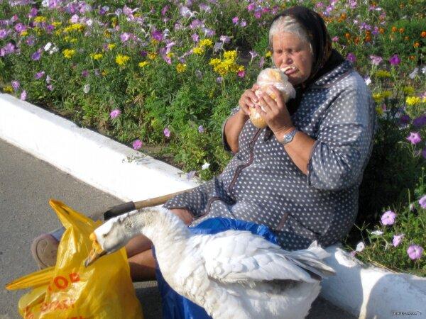 Бабушка с гусем на ЖД Запорожье-2