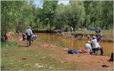"""Устье """"Краснюка"""" - речки Капустянки и рыбаки - ловящие, едящие и продающие рыбу из этой речки."""