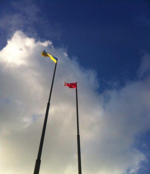 Флаги Украины и Запорожья
