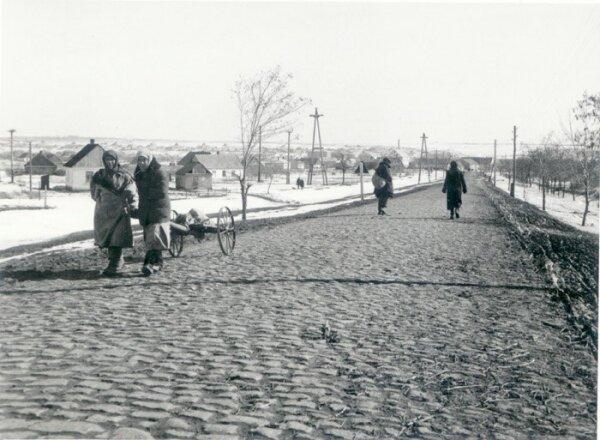 Остров Хортица, 1943 год