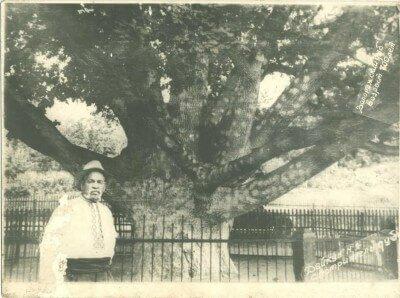 Запорожский дуб и его смотритель Нечипор Дейкун