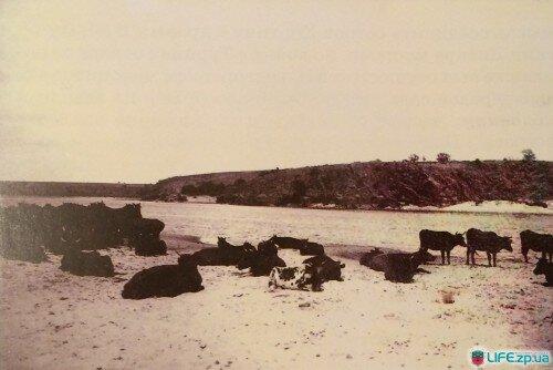 Песчаный перевал у устья реки Верхней Хортице напротив балки Музычиной