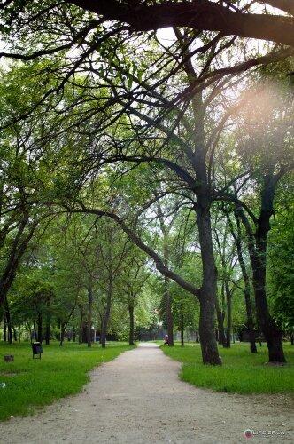 Пионерский парк возле ЗАГСа Ленинского района