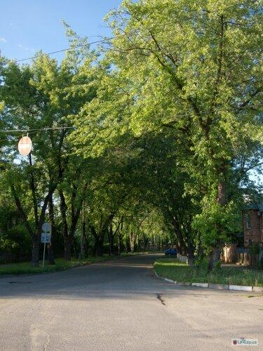 Улица Академика Веснина, рядом остановка Полукруг