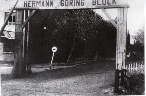 Завод Германа Геринга