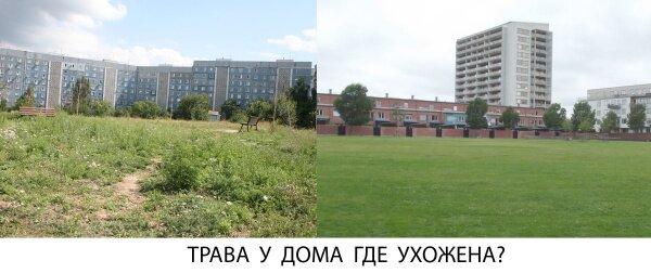 Трава у дома где ухожена?