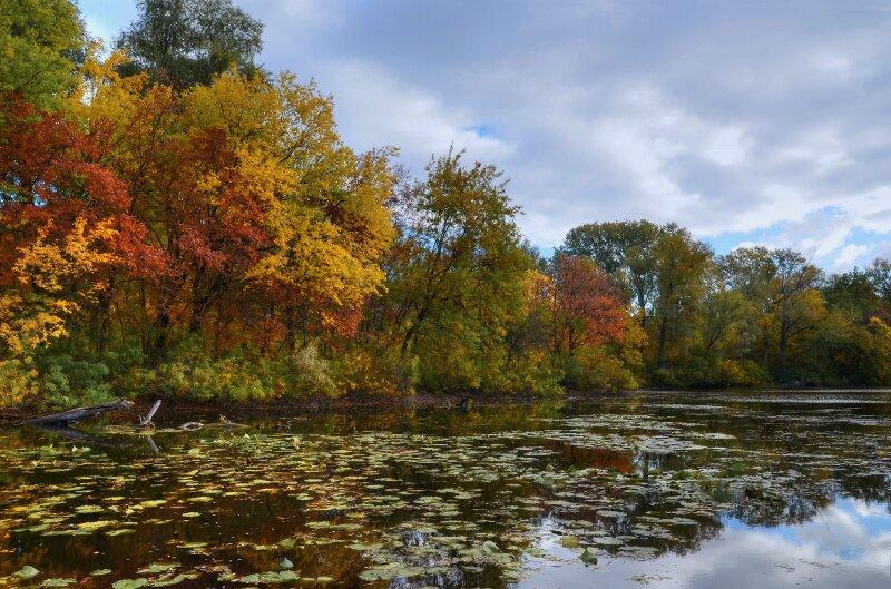 Запорожская осень
